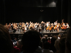 Orchestra Concert Friday night