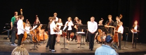 Double Bass and Viola group